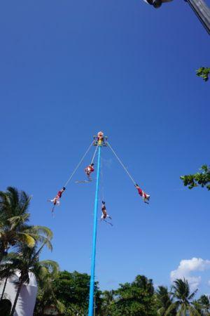 Pole Flying